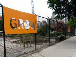 Community garden along Chicago avenue near Cabrini-Green
